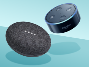 photo of an echo dot and a google home mini